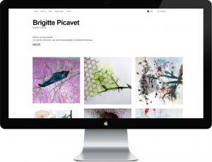 webdesign Brigitte Picavet