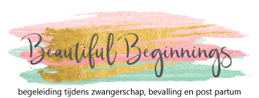 Beautiful-Beginnings logo
