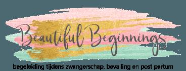 Beautiful-Beginnings logo